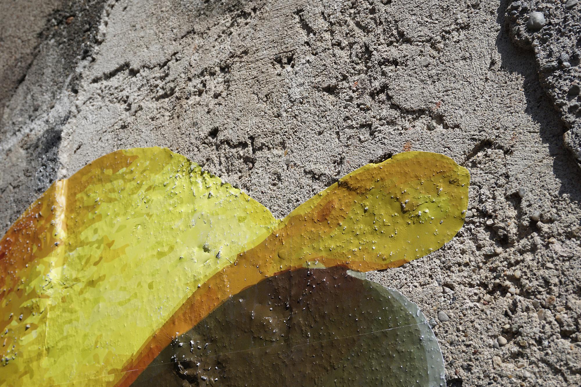Ampparito, Pringle