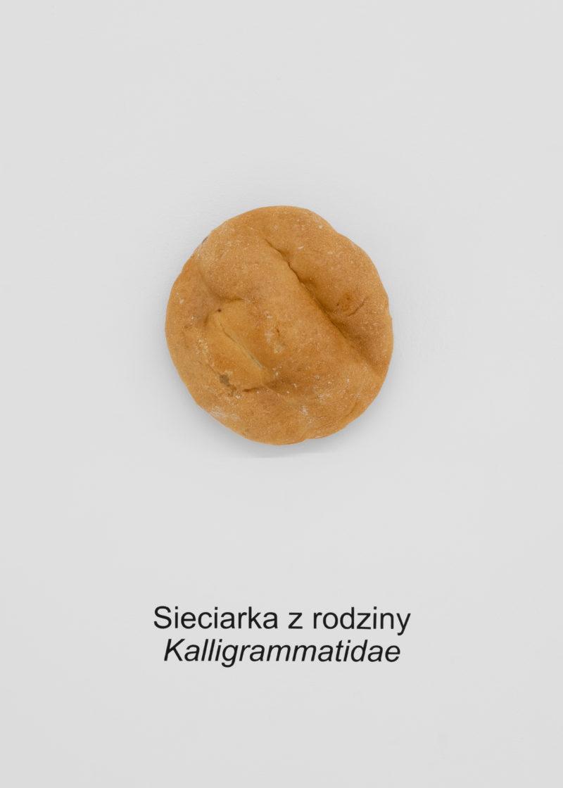 Adriana Ramić