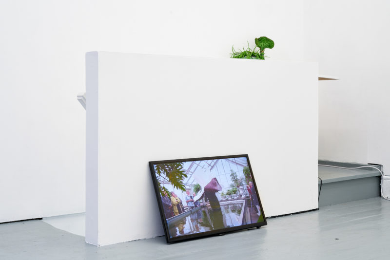Ingela Ihrman in 'Becoming Plant' at Tenderpixel