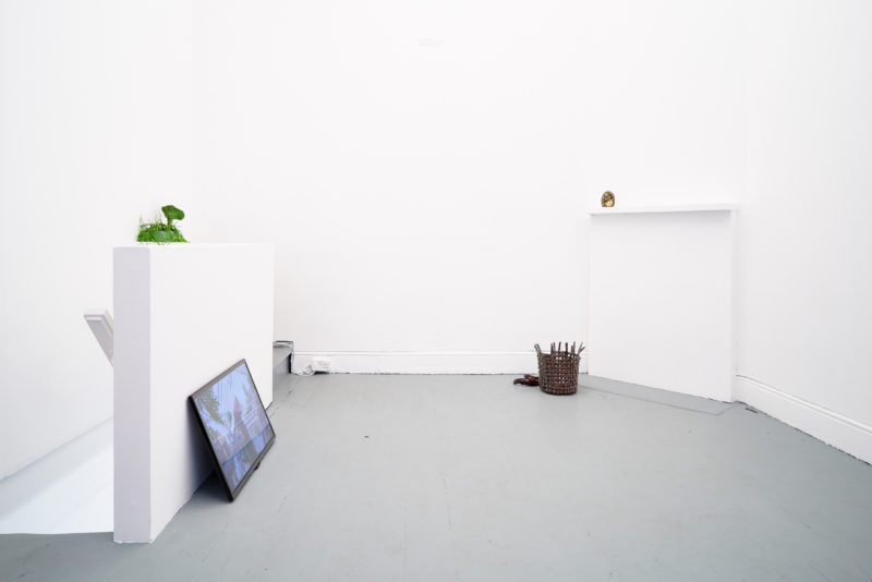 'Becoming Plant' at Tenderpixel